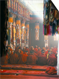 Monks Inside the Main Prayer Hall, Drepung Buddhist Monastery, Lhasa, Tibet, China Prints by Tony Waltham