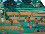 Painting of People Harvesting in Rice Fields, Neka Museum, Ubud, Island of Bali, Indonesia Poster by Bruno Barbier