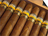 Close-Up of Limited Edition Cigars in a Box, Cohiba, Havana, Cuba, West Indies, Central America Print by Eitan Simanor