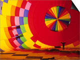 Hot Air Balloon, Albuquerque, New Mexico, USA Posters by Michael Snell