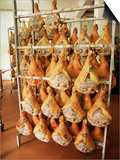 Parma Hams on Curing Racks, Near Pavullo, Emilia-Romagna, Italy Prints by Ian Griffiths