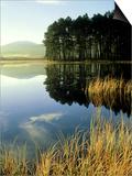 Loch Garten, Strathspey, Scotland Poster by Iain Sarjeant