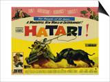 Hatari, 1962 Art