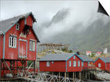 Seagulls Nesting on a Warehouse, Moskenesoya, Lofoten Islands, Norway, Scandinavia Poster by Gary Cook
