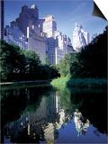 Central Park, New York City, New York Kunstdruck von Peter Adams
