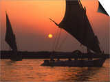 Felucca on Nile at Sunset, Cairo, Egypt Posters by Steve Starr