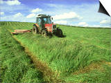 Tractor Cutting Grass Meadow for Silage Farming, UK Plakat af Mark Hamblin