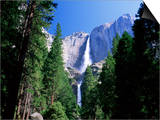 Upper and Lower Yosemite Falls, Swollen by Summer Snowmelt, Yosemite National Park, California Posters by Ruth Tomlinson