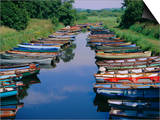 Boats, Killarney, County Kerry, Munster, Republic of Ireland (Eire), Europe Prints by Firecrest Pictures