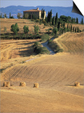 Rolling Landscape in Siena Province, Tuscany, Italy Prints by Bruno Morandi