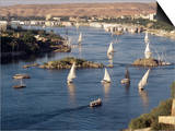 View of the River Nile, Aswan, Egypt, North Africa, Africa Posters by Robert Harding