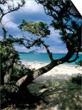 Southeast Coast, Island of Sardinia, Italy, Mediterranean Plakater af Oliviero Olivieri