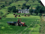 Croft with Hay Cocks and Tractor, Glengesh, County Donegal, Eire (Republic of Ireland) Plakater af Duncan Maxwell