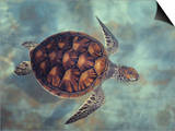 Green Turtle, Java, Indian Ocean Prints by Gerard Soury