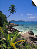 Tropical Beach, La Digue Island, Seychelles Art by Angelo Cavalli