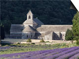 Abbey De Senanque and Lavender Fields, Near Gordes, Vaucluse, Provence, France, Europe Prints by Guy Edwardes