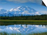 Tundra Ponds, Mt. Mckinley, AK Posters by Frank Staub