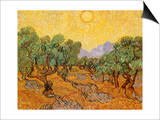 Sun over Olive Grove, 1889 Prints by Vincent van Gogh