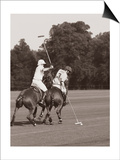 Polo In The Park II Poster by Ben Wood