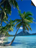 Bora Bora, Tahiti, Society Islands, French Polynesia, Pacific Islands, Pacific Posters by Mawson Mark