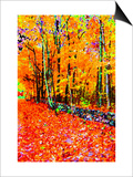 Forest in Autumn Posters by Rich LaPenna