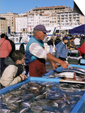Fish Market, Vieux Port, Marseille, Bouches Du Rhone, Provence, France Art by Guy Thouvenin
