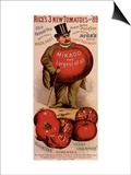 Rice's Tomato Seeds, Mikado, c.1889 Art