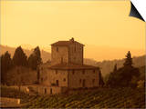 Farms and Vines, Tuscany, Italy Prints by J Lightfoot