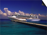 Cruise Ship, Cozumel, Mexico Art by Walter Bibikow
