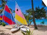 Sail Boats, Galley Bay, Antigua, Caribbean, West Indies, Central America Prints by Firecrest Pictures