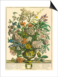 July Prints by Robert Furber