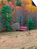 Cabin in Late Autumn in West Virginia Posters by Robert Finken