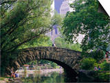 The Pond, Central Park, New York, USA Kunstdrucke von I Vanderharst