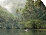 Loboc River, Bohol, Philippines, Southeast Asia, Asia Posters by Tony Waltham