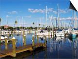 Marina, St. Petersburg, Gulf Coast, Florida, United States of America, North America Prints by Jeremy Lightfoot