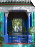 Jardin Majorelle, Marrakech, Morocco, North Africa, Africa Poster by Nico Tondini