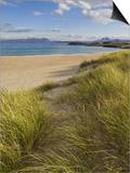 Sand Dunes and Dune Grasses of Mellon Udrigle Beach, Wester Ross, North West Scotland Posters by Neale Clarke