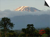 Mount Kilimanjaro, UNESCO World Heritage Site, Tanzania, East Africa, Africa Prints by Groenendijk Peter