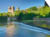 Durham Cathedral, and the River Wear, Durham, County Durham, England, Uk Posters by Guy Edwardes