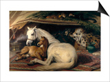 The Arab Tent, 1866 Prints by Edwin Henry Landseer
