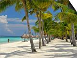 Beach Scene, Panglao, Bohol, Philippines, Southeast Asia, Asia Print by Luca Tettoni