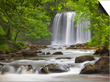 Sgwd yr Eira Waterfall, Brecon Beacons, Wales, United Kingdom, Europe Prints by Billy Stock