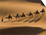 Camels in the Dunes, Merzouga, Morocco, North Africa, Africa Print by Michael Runkel