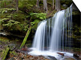Fern Falls, Coeur D'Alene National Forest, Idaho Panhandle National Forests, Idaho, USA Prints by James Hager
