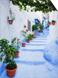 Blue Painted Steps With Flower Pots, Chefchaouen, Morocco, North Africa, Africa Poster by Guy Edwardes