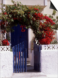 Bright Red Bougainvillea (Paper Flower) Trained in Arch Over Front of Cottage Santorini, Greece Art by Erika Craddock
