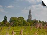 Salisbury Cathedral, Salisbury, Wiltshire, England, United Kingdom, Europe Art by Julian Elliott