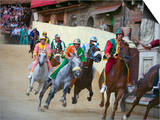 Riders Racing at El Palio Horse Race Festival, Piazza Del Campo, Siena, Tuscany, Italy, Europe Prints by Christian Kober