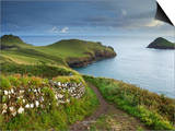 The Rumps, Pentire Point, Cornwall, England, United Kingdom, Europe Prints by Jeremy Lightfoot
