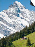 Jungfrau Massif and Swiss Chalet Near Murren, Jungfrau Region, Switzerland, Europe Posters af Michael DeFreitas